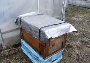ハウスの外に設置することで、ハウス内の高温を回避することができますが、ハウス内のミツバチの訪花状況に注意する必要があります
