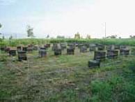 ヒグマ対策用の電気柵。写真提供:長谷川養蜂・長谷川行生氏